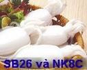 Biosta SB 26-NK8C