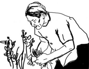 Bà vẫn muốn ở lại đây, là cây cổ thụ già, để cu Tí là chiếc lá sẽ rụng về cội nguồn của nó (hình : http://baohaiduong.vn)
