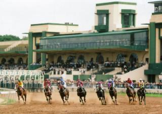 Đường vào trường đua có trăm lần thua, chỉ một lần huề…( ảnh: dantri.com.vn)