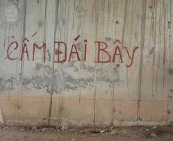 camdaibay2