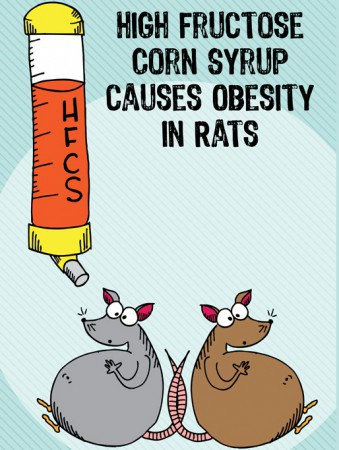 Đường sirô bắp cao fructose (HFCS) được dùng nhiều trong các loại nước giải khát, bánh kẹo,.. chẳng bổ béo gì cho cơ thể, mà lại làm tăng nguy cơ béo phì.