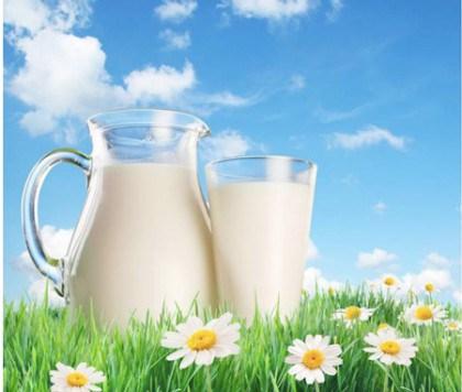 """Ở nước ngoài, chỉ có sữa tươi thanh trùng hoặc tiệt trùng, chứ hầu như không có cái gọi là """"sữa hoàn nguyên"""" (sữa bột pha thành nước rồi tiệt trùng đóng hộp)"""
