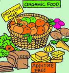 organic-food-1