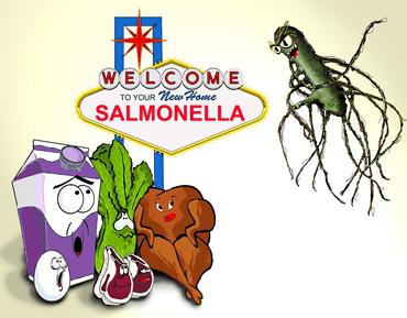 Nguồn lây nhiễm salmonella là thịt gia cầm, gà vịt, heo bò, sữa trứng, rau quả xanh, nhiễm qua tay chân, dụng cụ nhà bếp dao thớt thiếu vệ sinh nhất. Thực phẩm nên chiên xào hấp luộc kỹ để triệt tiêu salmonella